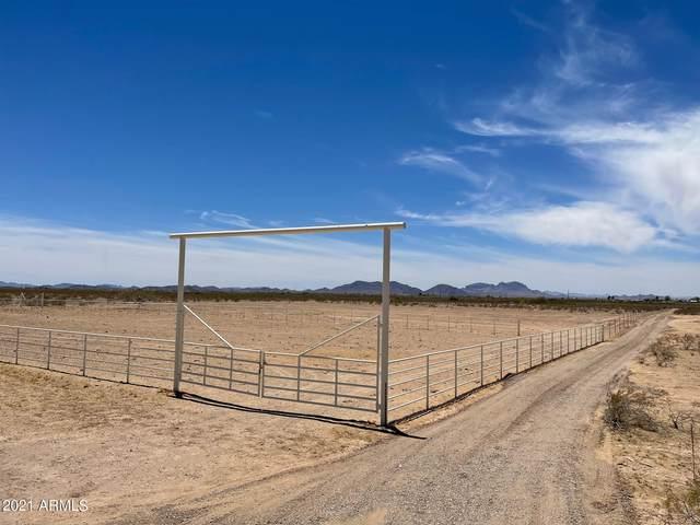 3400 N 359th Avenue, Tonopah, AZ 85354 (MLS #6254697) :: Yost Realty Group at RE/MAX Casa Grande