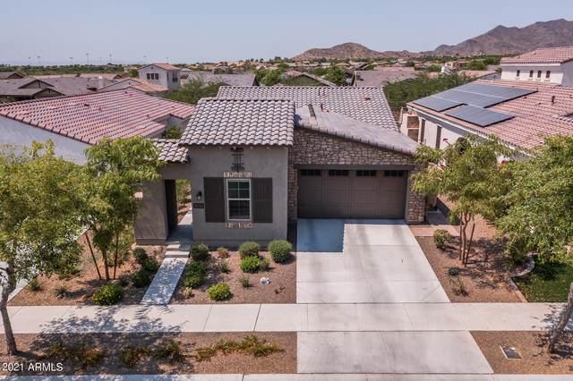 20761 W Hillcrest Boulevard, Buckeye, AZ 85396 (MLS #6254702) :: Power Realty Group Model Home Center