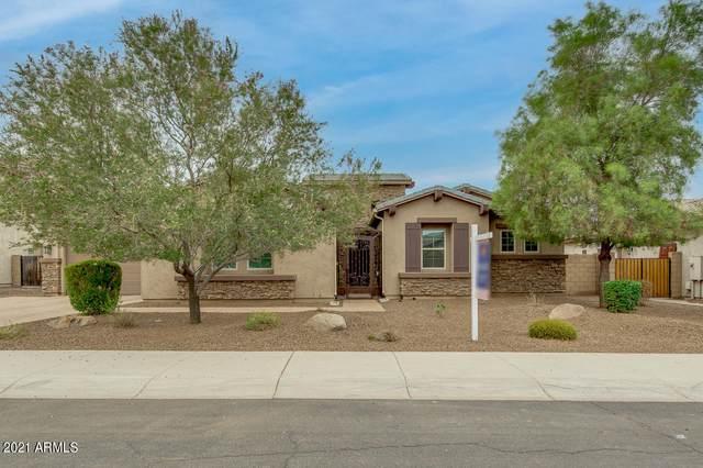 3009 E Wyatt Way, Gilbert, AZ 85297 (MLS #6254706) :: Jonny West Real Estate