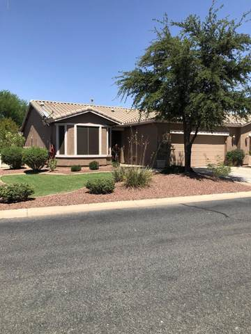 20571 N Lemon Drop Drive, Maricopa, AZ 85138 (MLS #6254739) :: Yost Realty Group at RE/MAX Casa Grande