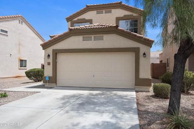 11449 W Mccaslin Rose Lane, Surprise, AZ 85378 (MLS #6254746) :: Yost Realty Group at RE/MAX Casa Grande
