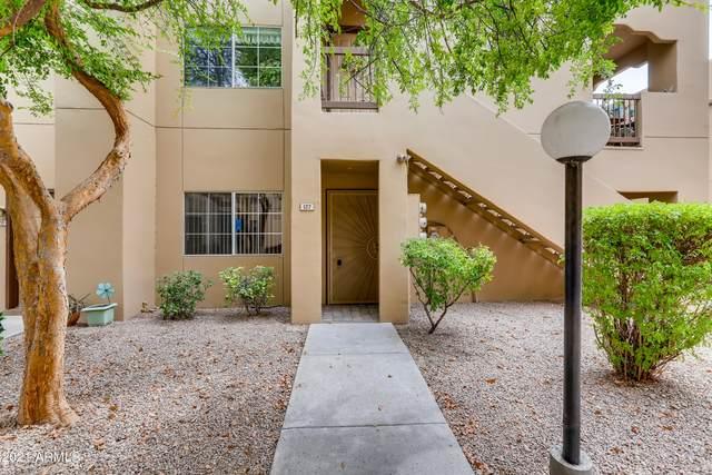 500 N Gila Springs Boulevard #127, Chandler, AZ 85226 (MLS #6254752) :: Howe Realty