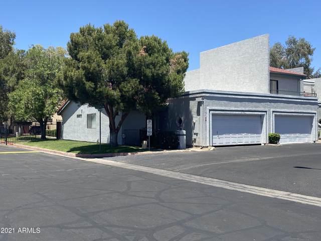 8702 N Shadow Lane, Peoria, AZ 85345 (MLS #6254764) :: Jonny West Real Estate