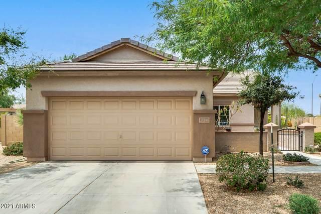 224 N 193RD Avenue, Buckeye, AZ 85326 (MLS #6254806) :: Power Realty Group Model Home Center