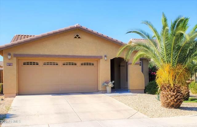 1506 E Lakeview Drive, San Tan Valley, AZ 85143 (MLS #6254837) :: Yost Realty Group at RE/MAX Casa Grande