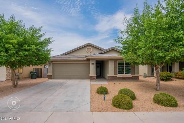 2738 W Chanute Pass, Phoenix, AZ 85041 (MLS #6254838) :: Yost Realty Group at RE/MAX Casa Grande
