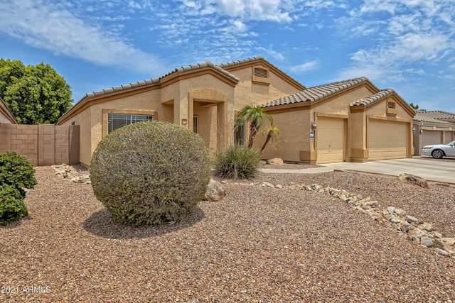 10534 E Dolphin Avenue, Mesa, AZ 85208 (MLS #6254839) :: Yost Realty Group at RE/MAX Casa Grande