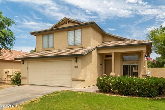 3538 E Park Avenue, Gilbert, AZ 85234 (MLS #6254866) :: Jonny West Real Estate