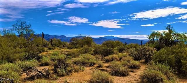17xxx E Montogmery Road, Rio Verde, AZ 85263 (MLS #6254880) :: Conway Real Estate
