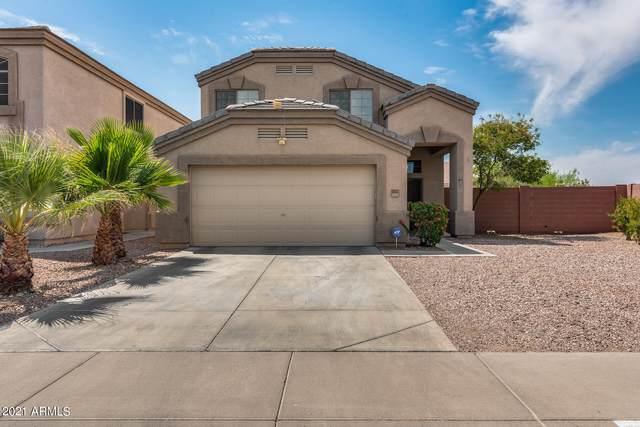 23973 W Lasso Lane, Buckeye, AZ 85326 (MLS #6254886) :: Power Realty Group Model Home Center