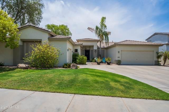 2027 W Remington Drive, Chandler, AZ 85286 (MLS #6254891) :: Howe Realty