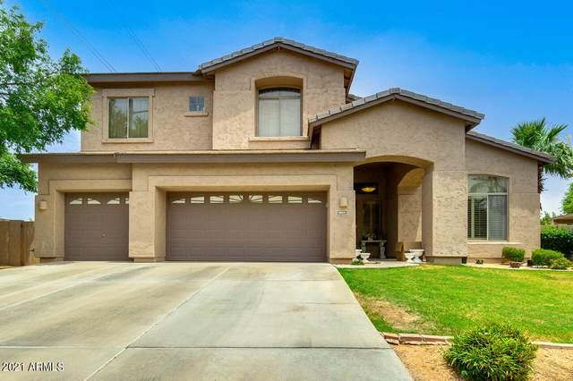 367 N Date Palm Drive, Gilbert, AZ 85234 (MLS #6254915) :: Jonny West Real Estate