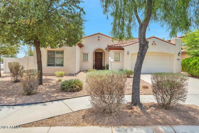 16155 W Clinton Street W, Surprise, AZ 85379 (MLS #6254918) :: Jonny West Real Estate