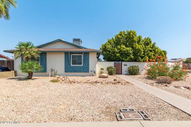 4802 W Redfield Road, Glendale, AZ 85306 (MLS #6254924) :: Yost Realty Group at RE/MAX Casa Grande