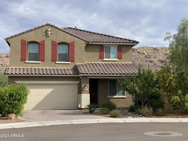 3719 E Branham Lane, Phoenix, AZ 85042 (MLS #6254937) :: Yost Realty Group at RE/MAX Casa Grande