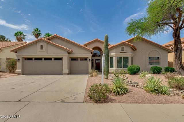 6261 E Snowdon Street, Mesa, AZ 85215 (MLS #6254968) :: Conway Real Estate