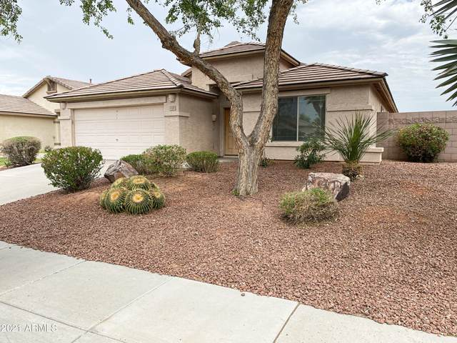 6101 S Four Peaks Place, Chandler, AZ 85249 (MLS #6254971) :: Yost Realty Group at RE/MAX Casa Grande