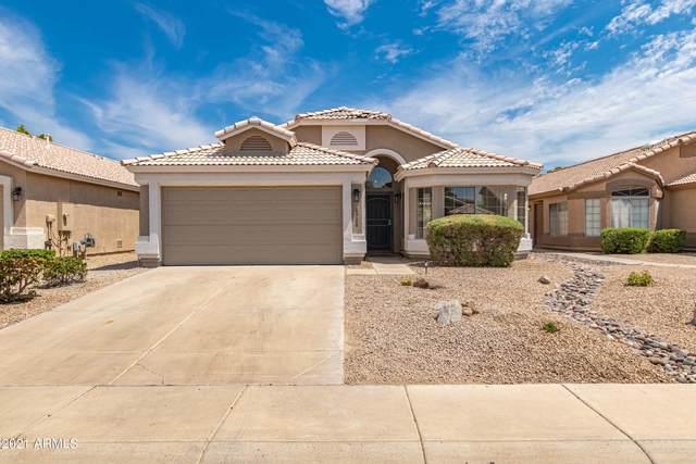 6528 W Desert Hollow Drive, Phoenix, AZ 85083 (MLS #6254986) :: Yost Realty Group at RE/MAX Casa Grande