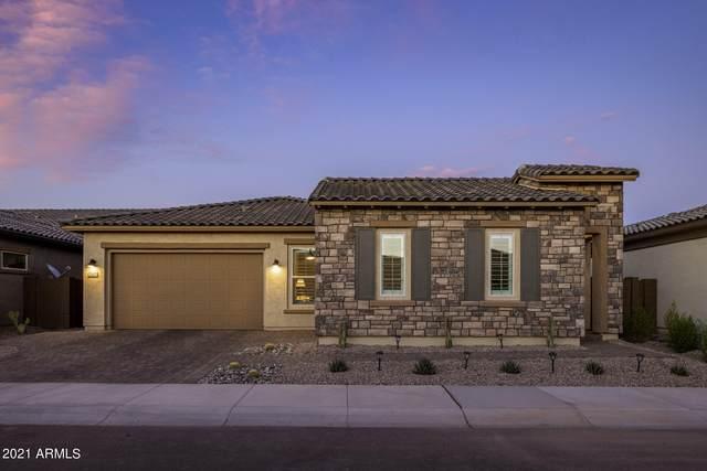 22423 N 30TH Place, Phoenix, AZ 85050 (MLS #6255015) :: Synergy Real Estate Partners