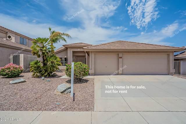 2116 E Wahalla Lane, Phoenix, AZ 85024 (MLS #6255024) :: Synergy Real Estate Partners
