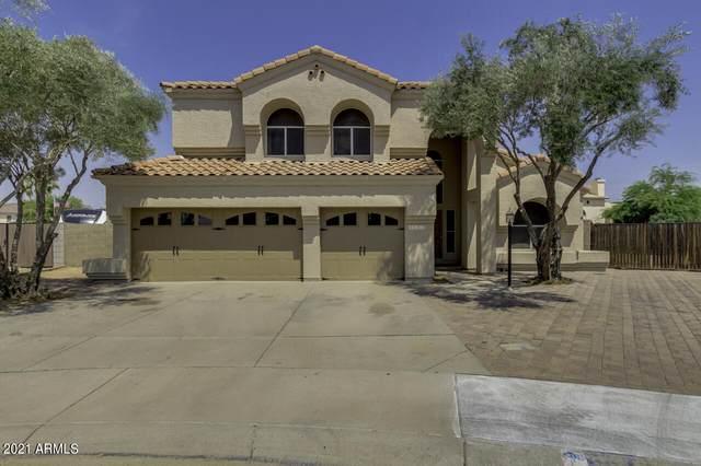3632 E Renee Drive, Phoenix, AZ 85050 (MLS #6255025) :: Synergy Real Estate Partners