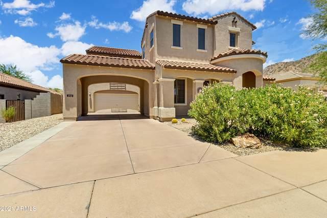 2532 W Via Perugia, Phoenix, AZ 85086 (MLS #6255034) :: Yost Realty Group at RE/MAX Casa Grande
