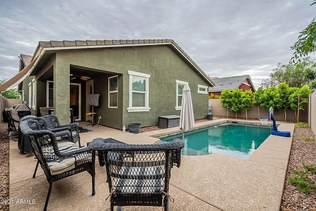 7053 E Osage Avenue, Mesa, AZ 85212 (MLS #6255089) :: Power Realty Group Model Home Center