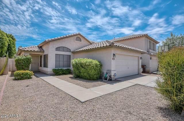 13611 N 82ND Avenue, Peoria, AZ 85381 (MLS #6255116) :: Yost Realty Group at RE/MAX Casa Grande