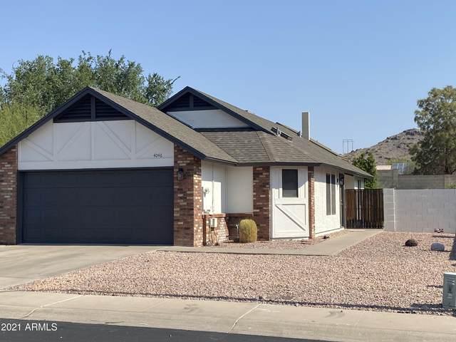 4046 E Alta Mesa Avenue, Phoenix, AZ 85044 (MLS #6255134) :: Yost Realty Group at RE/MAX Casa Grande