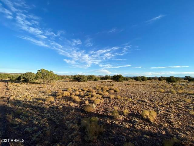 139 Blue Diamond Drive, Concho, AZ 85924 (MLS #6255158) :: NextView Home Professionals, Brokered by eXp Realty