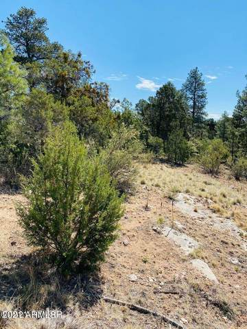 3343 Mogollon Drive, Overgaard, AZ 85933 (MLS #6255160) :: Keller Williams Realty Phoenix