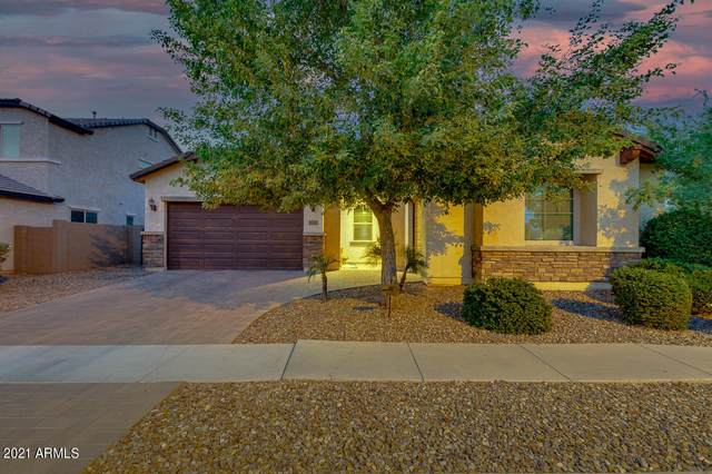 3586 E Ivanhoe Street, Gilbert, AZ 85295 (MLS #6255195) :: Yost Realty Group at RE/MAX Casa Grande