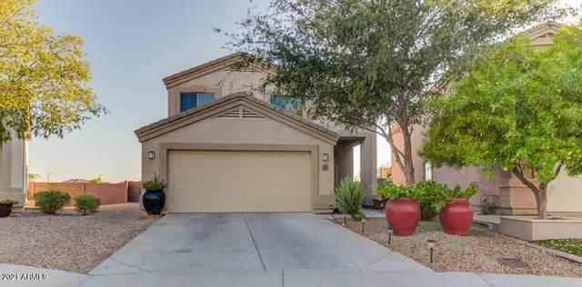 1682 S 233RD Avenue, Buckeye, AZ 85326 (MLS #6255197) :: Yost Realty Group at RE/MAX Casa Grande