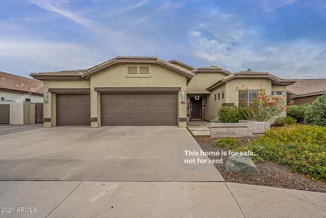 2331 E Bellerive Place, Chandler, AZ 85249 (MLS #6255206) :: Yost Realty Group at RE/MAX Casa Grande