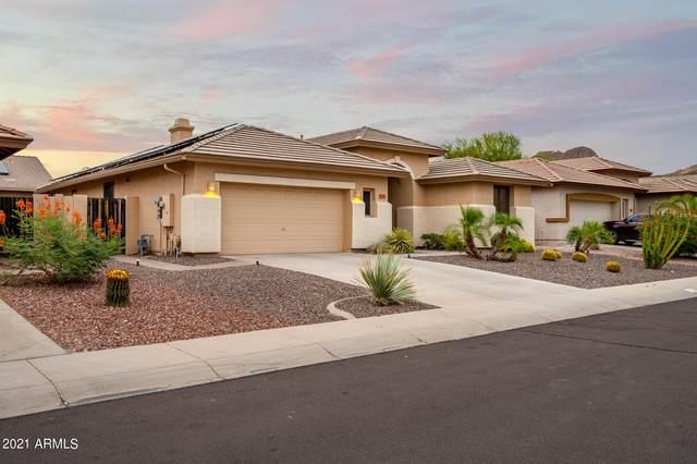 6764 W Avenida Del Rey, Peoria, AZ 85383 (MLS #6255207) :: Howe Realty