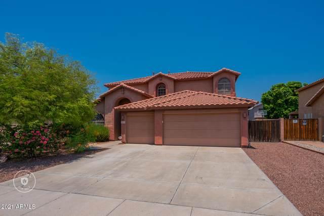 6770 W Lariat Lane, Peoria, AZ 85383 (MLS #6255221) :: Howe Realty