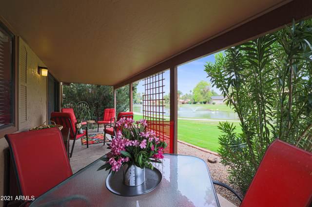 367 Leisure World, Mesa, AZ 85206 (MLS #6255261) :: Selling AZ Homes Team