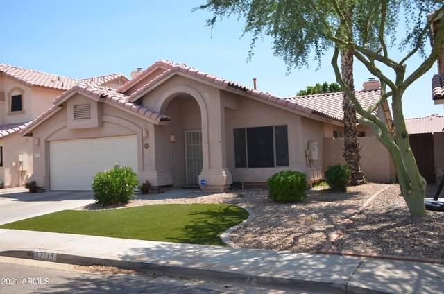 17215 N 45TH Street N, Phoenix, AZ 85032 (MLS #6255285) :: Yost Realty Group at RE/MAX Casa Grande