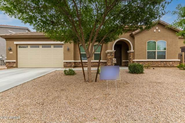 6631 S Balboa Drive, Gilbert, AZ 85298 (MLS #6255292) :: Dijkstra & Co.