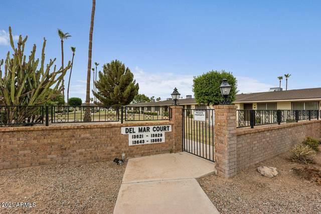 13653 N Newcastle Drive, Sun City, AZ 85351 (MLS #6255294) :: Zolin Group