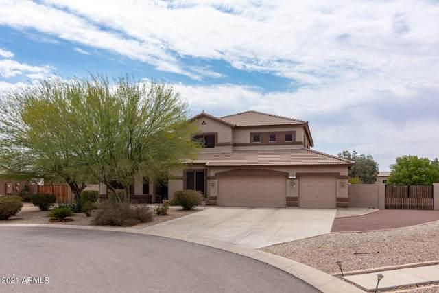 69 E Shire Court, San Tan Valley, AZ 85143 (MLS #6255360) :: Yost Realty Group at RE/MAX Casa Grande