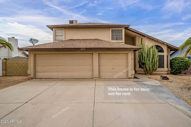 8238 W Larkspur Drive, Peoria, AZ 85381 (MLS #6255395) :: The Everest Team at eXp Realty