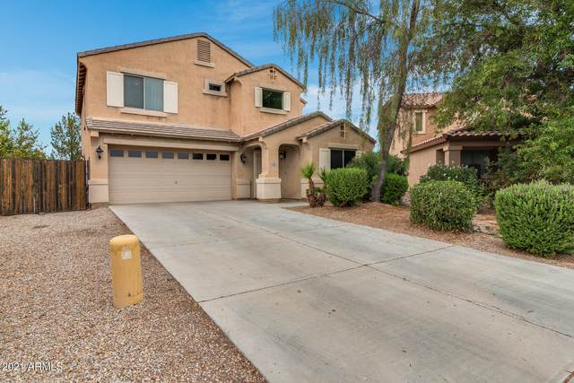 1148 W Hereford Drive, San Tan Valley, AZ 85143 (MLS #6255423) :: The Everest Team at eXp Realty