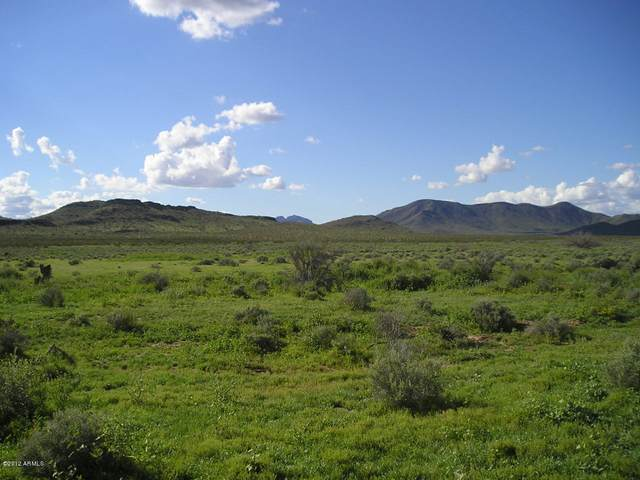XX20 S Horseshoe Trail, Tonopah, AZ 85354 (MLS #6255424) :: Howe Realty