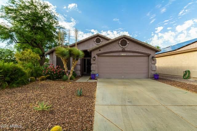 2702 E Hartford Avenue, Phoenix, AZ 85032 (MLS #6255425) :: Yost Realty Group at RE/MAX Casa Grande