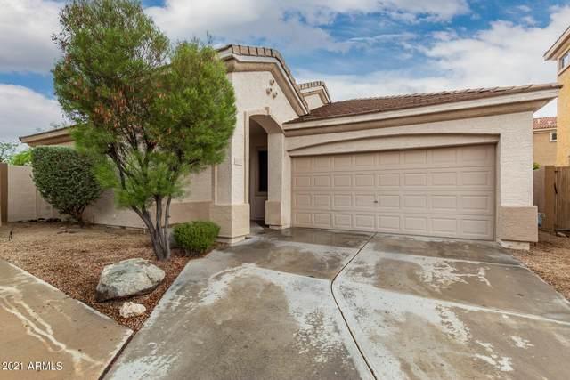 4151 E Hallihan Drive, Cave Creek, AZ 85331 (MLS #6255447) :: Lucido Agency