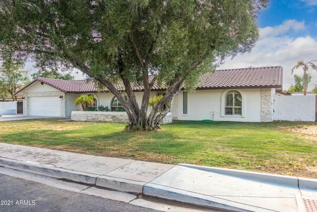 15602 N Hana Maui Drive, Phoenix, AZ 85022 (MLS #6255450) :: Yost Realty Group at RE/MAX Casa Grande