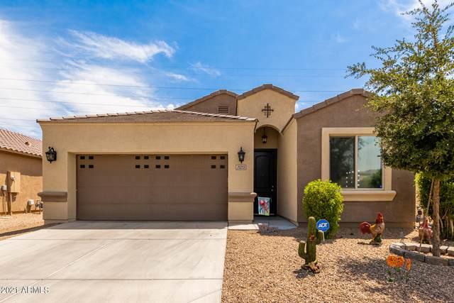20213 N Herbert Avenue, Maricopa, AZ 85138 (MLS #6255457) :: Dijkstra & Co.