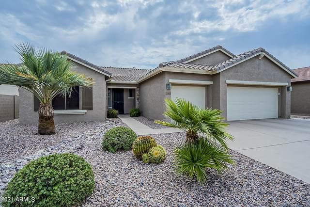 5161 N Blythe Court, Eloy, AZ 85131 (MLS #6255482) :: Lucido Agency