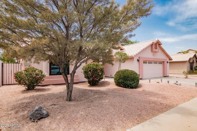 4217 W Saguaro Park Lane, Glendale, AZ 85310 (MLS #6255486) :: Yost Realty Group at RE/MAX Casa Grande
